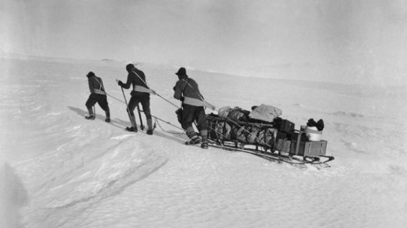 Robert F. Scott and team in Antarctica haul a sledge across the ice.