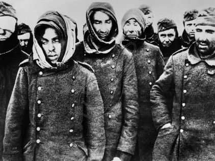 Image result for german pows stalingrad