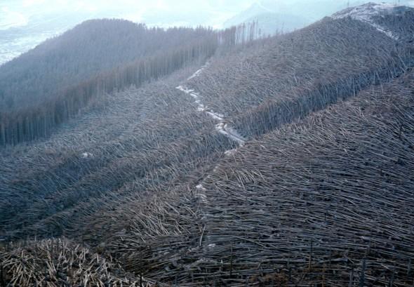 Pyroclastic flow is killer.