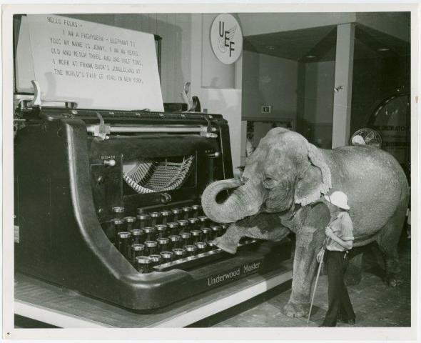 An elephant using an oversized typewriter is the cutest thing I have ever seen in my entire life.
