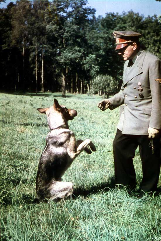 Hitler_w_Blondi_550