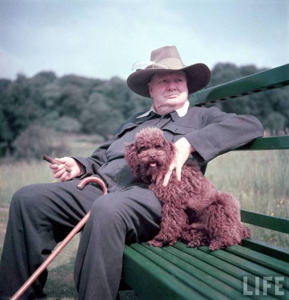 I grew up thinking that Churchill was a fat man, remarkably fat. By today's North American standard, he's just a little chubby.