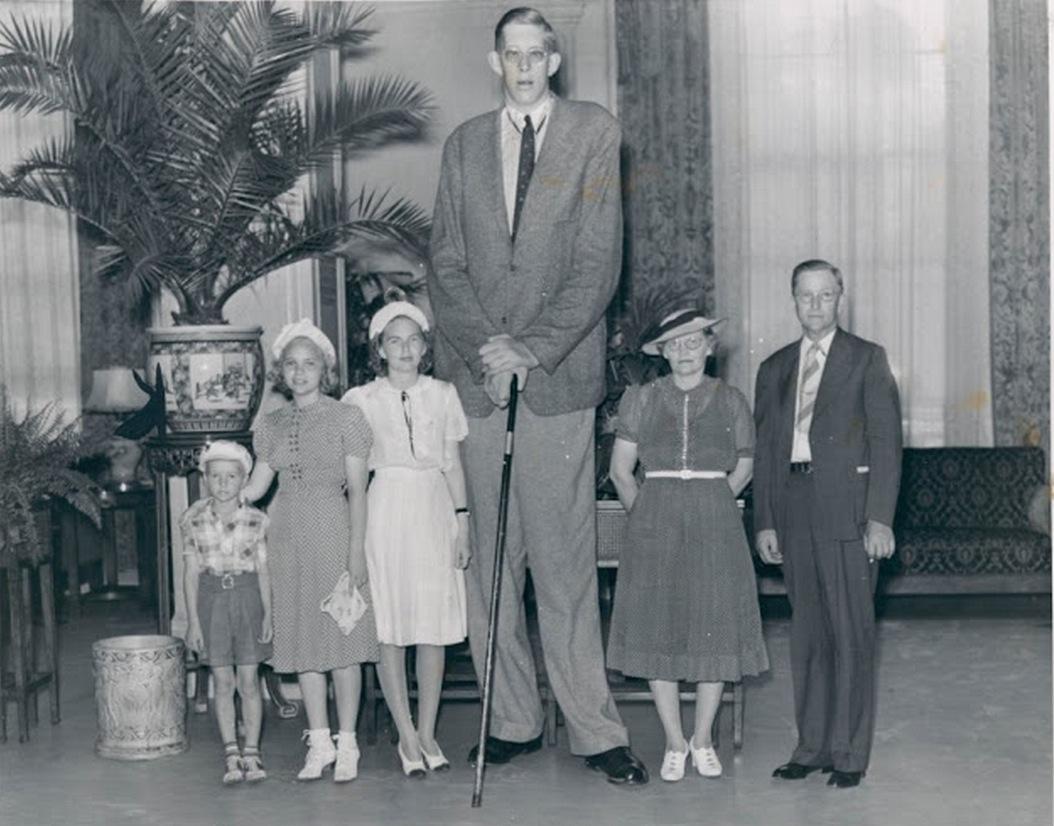 List of tallest statues  Wikipedia